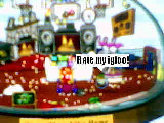 rate-my-igloo.jpg